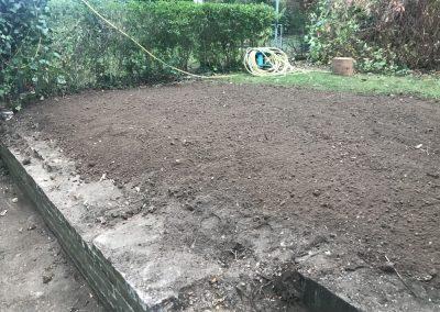 Baumpflege - Gartenboden
